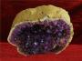 Gold Amethyst druse 2